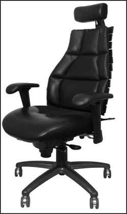 22111 RFM Verte Executive Ergonomic Office Chairs for Bad Backs with Black Frame