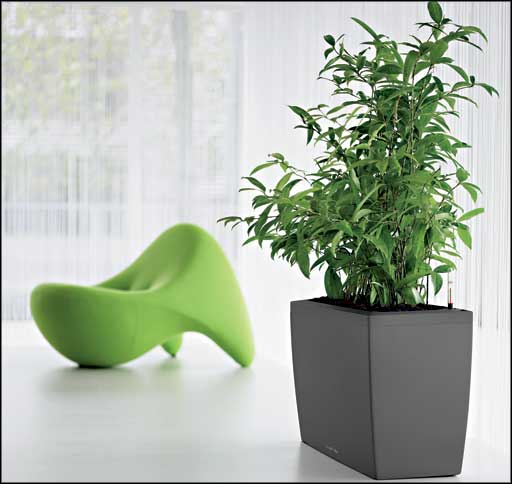 large office plants office furniture